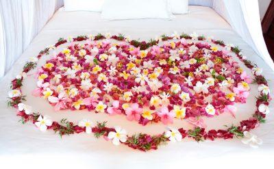 flower-bed-hr