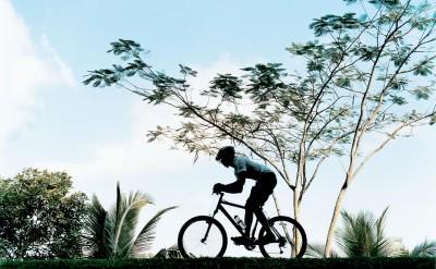 44165683-H1-mountain_biking