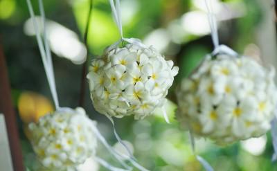 44182718-H1-Hanging_frangipani_flower_balls