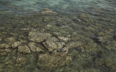 nature - seawater and rocks_1396