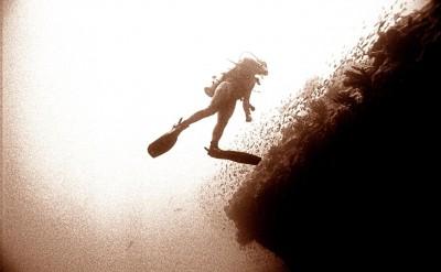 44154784-H1-Diver-Quick Preset_1502x1000