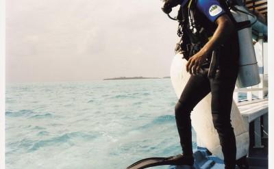 44154802-H1-Diving-Quick Preset_1244x999
