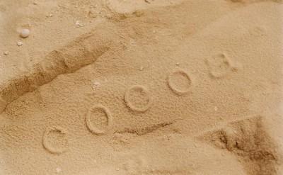 44157011-H1-Footprint-Quick Preset_1251x1000