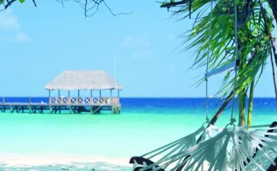 44157084-H1-Island_Life-Quick Preset_1000x1358