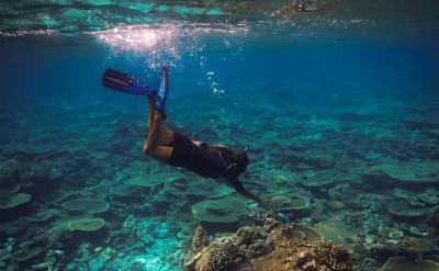 Snorkelling with Marine biologist Soneva Fushi by Antonina Gern-Quick Preset_1500x1000