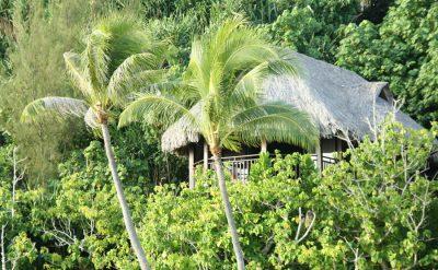 island-luxury-lodge-bird-view-2