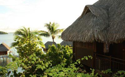 island-luxury-lodge-bird-view