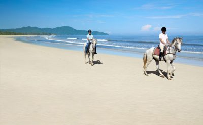 rrr-gallery-beach-and-horses